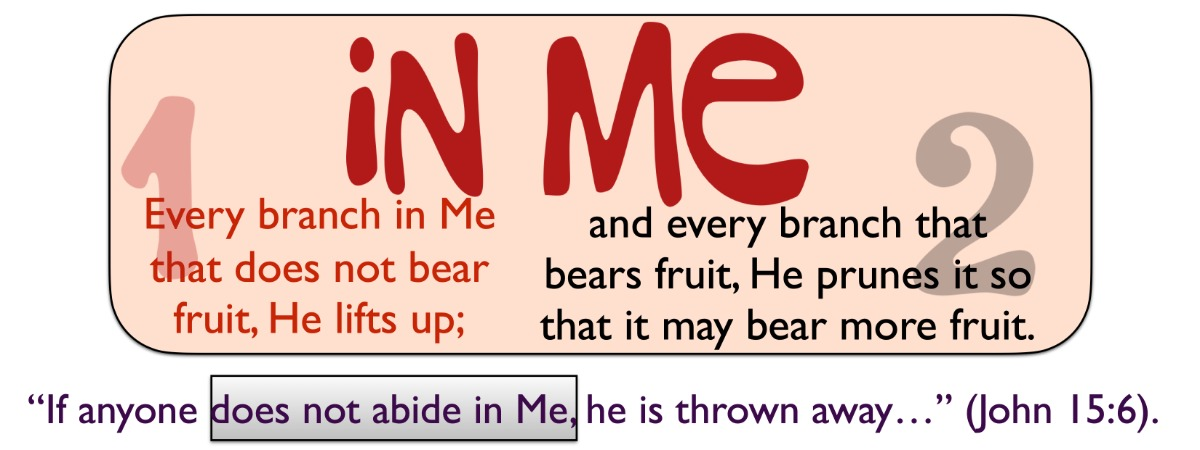 In Me refers to being in Christ and refers to Christians, those who are saved by Christ Jesus.