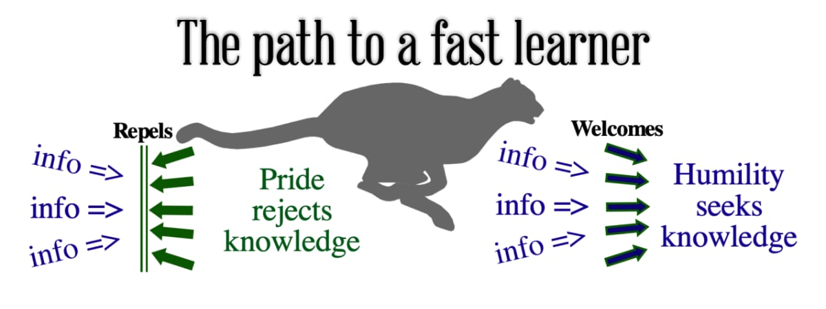 The path to a fast learner