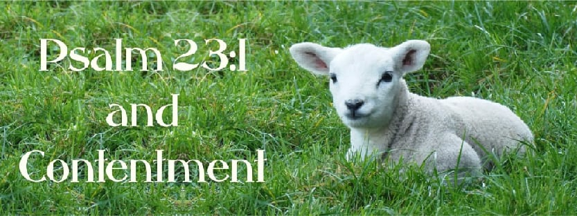 Psalm 23:1 and Contentment: The sheep under the shepherd's care