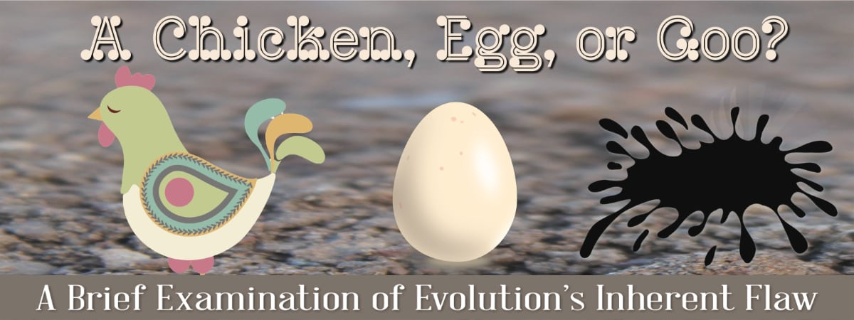 The Chicken, Egg, and Goo A Brief Examination of Evolution's Fatal Flaw