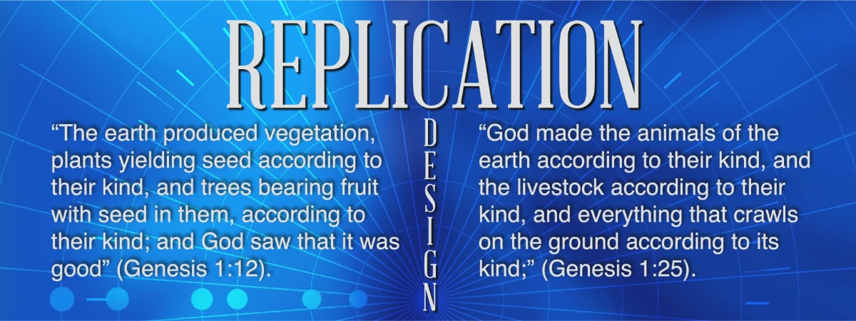 God built-in Replication to the design of the creatures