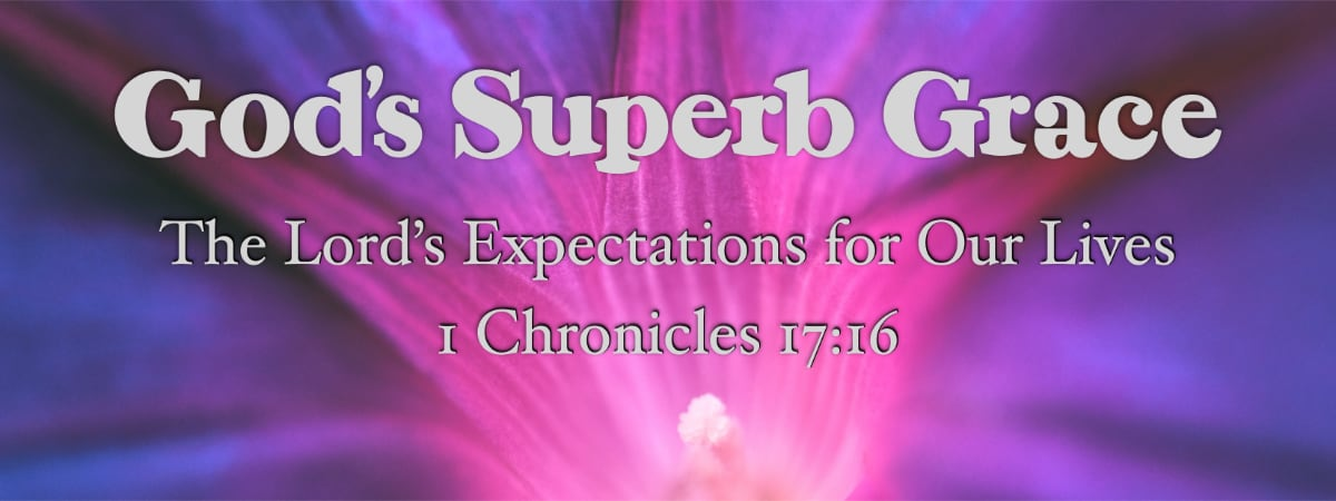 God's Superb Grace: The Lord's Expectations for Our Lives (1 Chronicles 17:16)