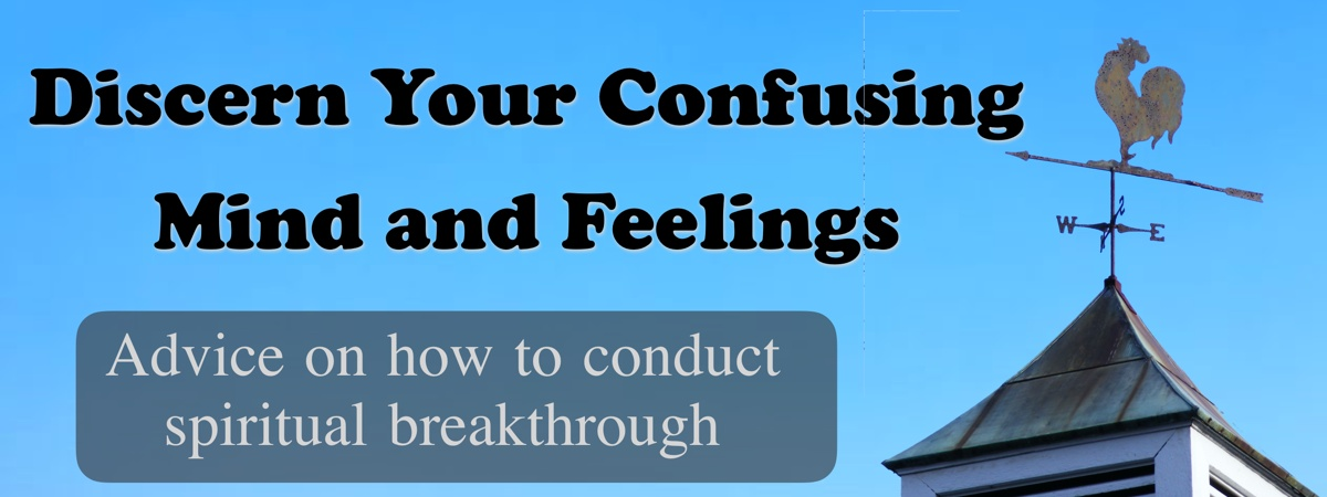 Discern Your Confusing Mind and Feelings