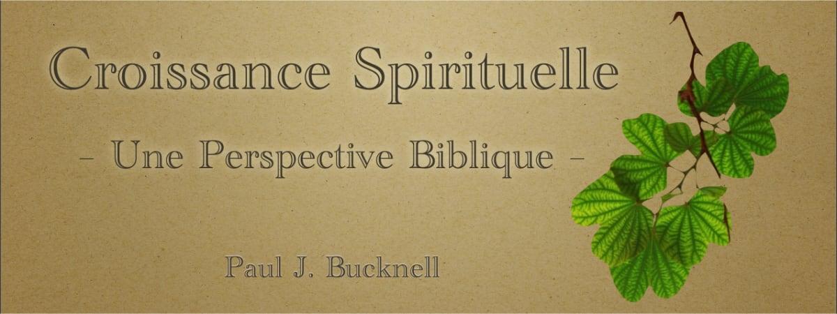 Croissance spirituelle: Une Perspective Biblique